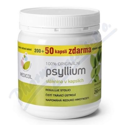 Psyllium kapsle 250 ks