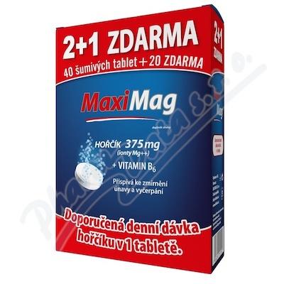 MaxiMag Hořčík+B6 šum.tbl.2+1zdar.3x20tb