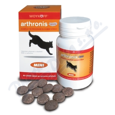 Arthronis mini ACUTE CANIS sýr.pří.60tbl